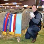 Australian Sheep & Wool Show, Bendigo 2017
